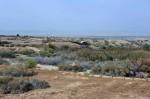 Site du baptême « Béthanie au-delà du Jourdain » (Al-Maghtas)