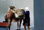 Vie quotidienne à Mykonos
