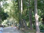Le parc de Gülhane