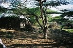 Les ruines de Takwa