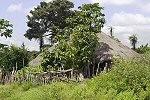 Edioungou (Casamance)