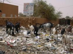 Les différents visages d'Agadez