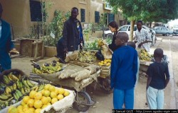 Le marché Sabon Gari
