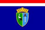 Le comitat de Sisak-Moslavina