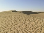 Le sahara et le grand erg oriental