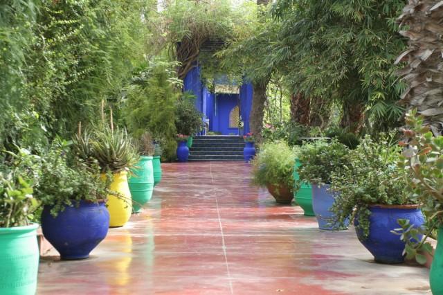 Le Maroc Marrakech Les Jardins Majorelle Club Des Voyages