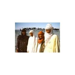 Blues touareg: Abdallah Oumbadougou et Takrist N