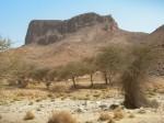 Le plateau de l'Assekrem