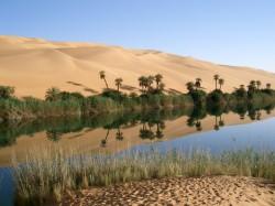 Les oasis d'Ubari