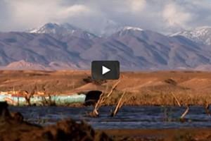 Le lac El Mansour Eddahbi Ouarzazate
