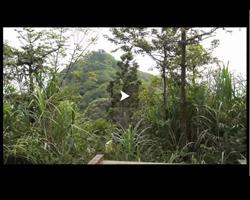 Randonnée dans les montagnes Wu zhi shan